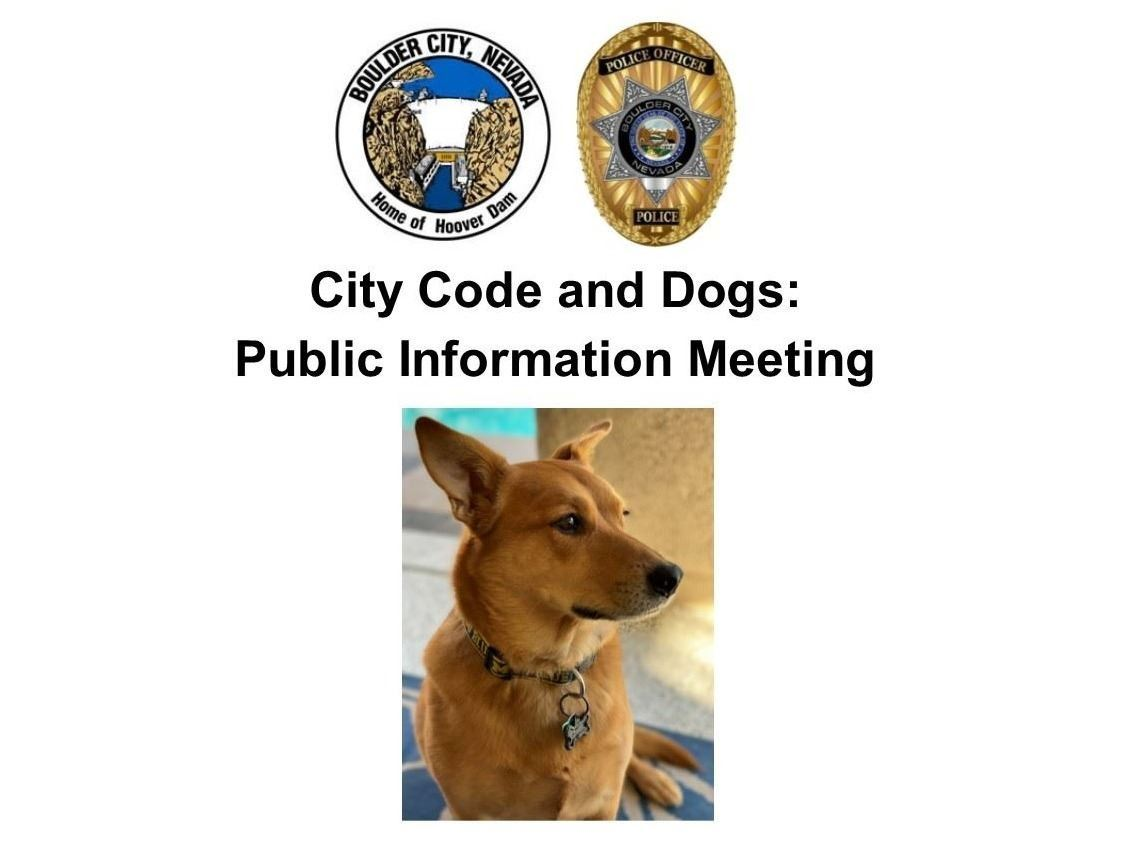 11.17.20 City Code and Dogs Public Information Meeting